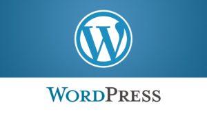 Nejpoužívanější redakční systém WORDPRESS